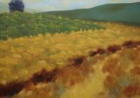 Evolution - 6x6ft - oil on canvas